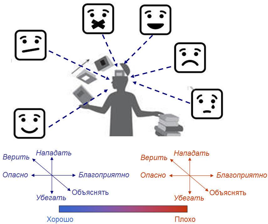 Рис. 3. Социо-сексуальный контур и его четырехмерное пространство мотиваций