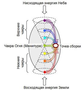 Потоки энергии и структура энергообмена